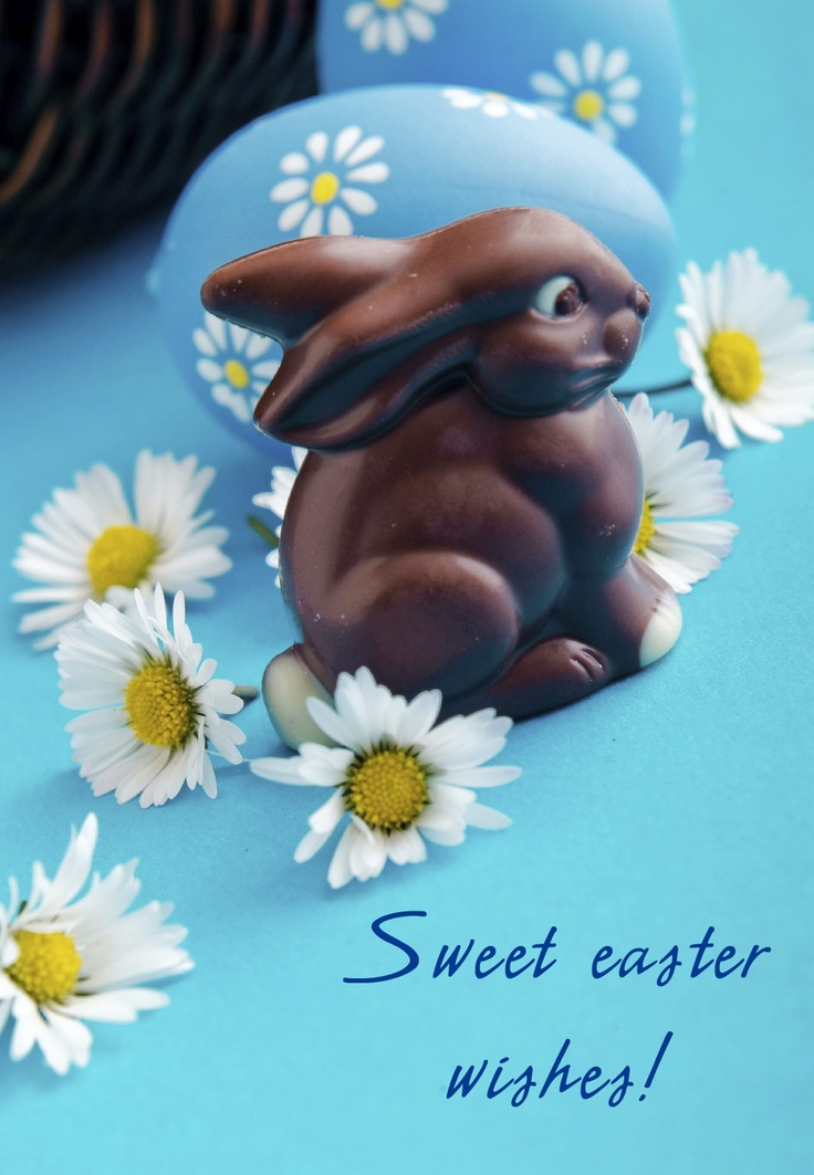 20 best Easter Cards images on Pinterest Free printable, Card - free printable apology cards