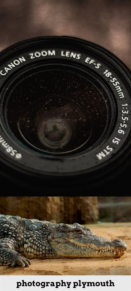 Susan Sontag On Photography Ebook