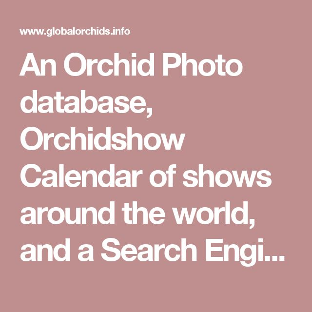 An Orchid Photo database, Orchidshow Calendar of shows around the world, and a Search Engine for species and hybrid