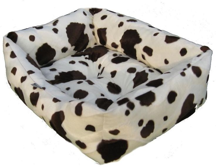 Black Cow Bed