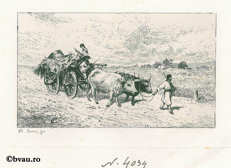 """Theodor Aman, Car cu boi, gravură în aramă. Imagine din colecțiile Bibliotecii """"V.A. Urechia"""" Galați."""