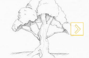 bandicam_20140215_001111739.jpg (344×223)