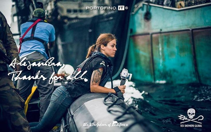 ALEJANDRA, THANKS FOR ALL! ALEJANDRA, GRAZIE PER TUTTO! The Videographer and Photographer Alejandra Gimeno.  The «Dolphins of Portofino» love Sea Shepherd Global #portofino #seashepherd Sea Shepherd Italia Photo: Simon Ager / Sea Shepherd Global