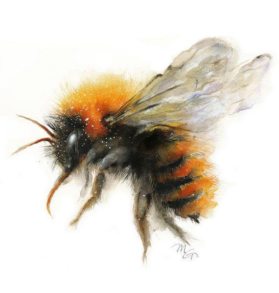 Abeja acuarela - Bumble Bee impresión de Giclee. Ilustración de la naturaleza. Miel de abeja, abeja de vuelo, arte encantadora abeja