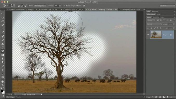 Advanced Photoshop Masking Online Class with Ben Willmore http://photoshoproadmap.com/adobe-photoshop-mastery-advanced-masking-with-ben-willmore-creativelive-learn-be-inspired/?utm_campaign=coschedule&utm_source=pinterest&utm_medium=Photoshop%20Roadmap&utm_content=Advanced%20Photoshop%20Masking%20Online%20Class%20with%20Ben%20Willmore