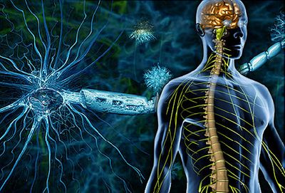 Esclerosis Múltiple: Tratamiento natural con base científica