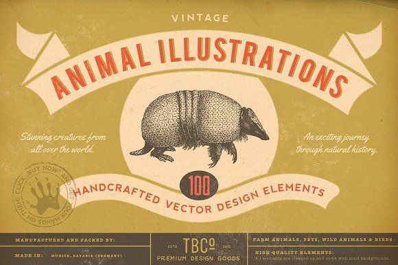100 Vintage Animal Illustrations by The Beacon Collection on @creativemarket