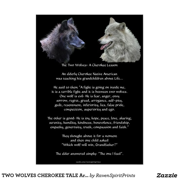 TWO WOLVES CHEROKEE TALE Art Posters