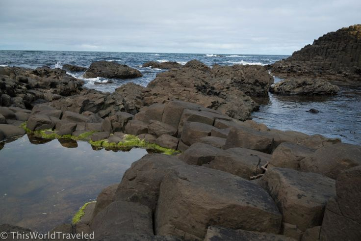 Surrounded by pools of water the basalt columns are stacked in varying heights at Giant's Causeway