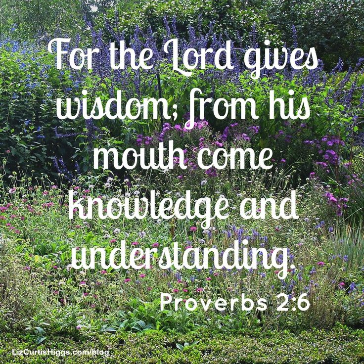 """#50 """"Knowledge is power, all right—the power of God, the One who knows everything."""" http://www.lizcurtishiggs.com/2014/01/your-50-favorite-proverbs-wisdoms-source/"""