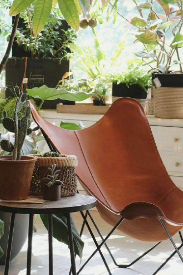 Decoration challenge: What do you do with a chair that changes colour over time? · Solution: Use plants! Plants are the perfect companions for vegetable tanned leather. As time goes by, leather evolves. So do plants. · Nature Meets Art · Thank you @slowhouse_futakotamagawa for the image.