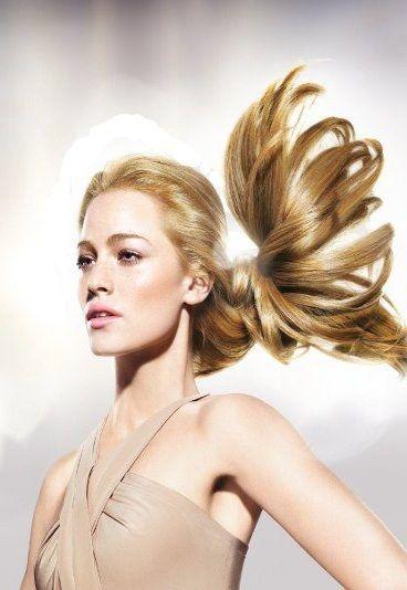 el champú de caballo tiene efectos milagrosos contra la caída del cabello, la deshidratación o la falta de brillo.