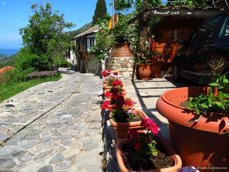 A cobbled street in Kazaviti (Megalos Prinos) - old mountain village with traditional houses, Thassos Island