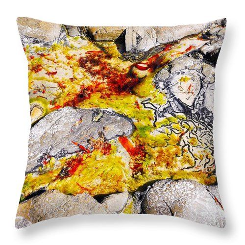 Sea Life in the Rocks Throw Pillow by Lexa Harpell. #seaweed #dried #bullkelp #rocks #water #throwpillow #fisherspointtasmania #sealife #seascape #homedecor #summerdecor #sealifedecor