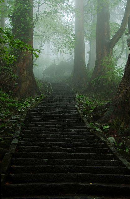 Misty Path to Sacred mountains, Mount Haguro, Yamagata, Japan