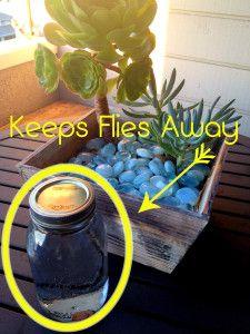 Frasco con agua y monedas para espantar a las moscas