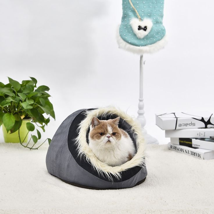 Pawz Road Dog Bed Pet House Lovely Soft Pet Products Kennel Warm Nest For Puppy Removable. Type: DogsBrand Name: PAWZ RoadModel Number: GW0025Weight: 430gItem Type: Beds & SofasFeature: TravelMaterial: 100% CottonWash Style: otherPattern: LovelyPawz Road Dog Bed Pet House Lovely Soft Pet Products Kennel Warm Nest For Puppy Removable Washable 4Choices