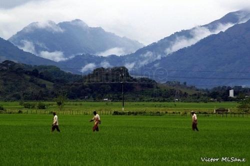 Bonao es uno de los pueblos más rico de la republica dominicana; sus yacimientos de oro y níquel, son la mayor fuente de empleo para sus habitantes.