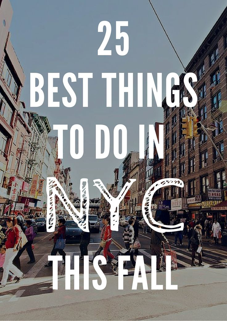 25 best things to do in new york resor for Top things to do in new york in december