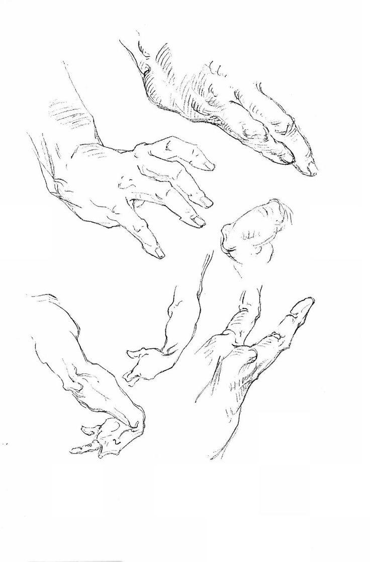 96 best George Bridgman images on Pinterest | Anatomía humana ...