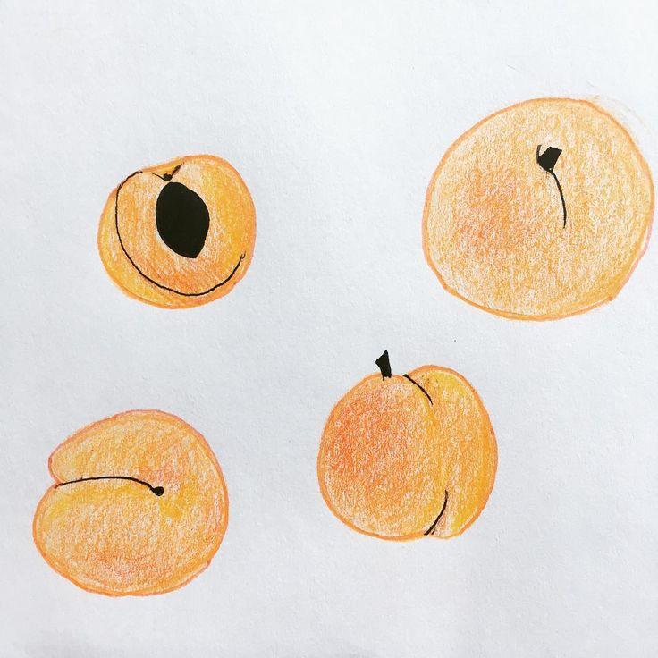 C'est pas de saison, tant pis! D'appétissants abricots pour poursuivre le fun avec les crayons de couleur 🍊🍑 (ya pas d'emoji abricot 😅) #coloredpencils #apricot #foodillustration #abricots #crayonsdecouleur #scandipan #simplicity #minimalism