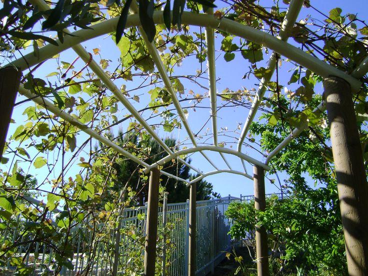 Grape Vines Trellis Design Over Driveways Bend Steel
