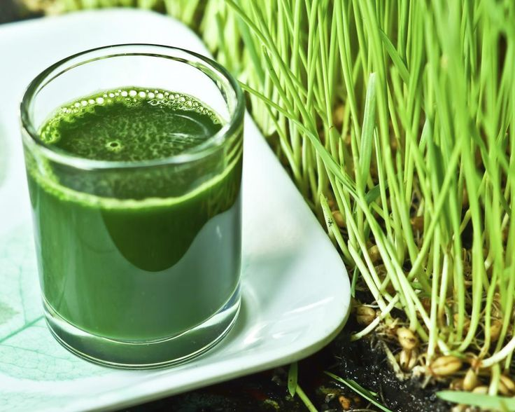Suc din iarba de grau verde – iata o bautura pe care multi ar considera-o ciudata, dar nu si raw-veganii! La cat este sanatoasa, ai putea sa-i dai o sansa!