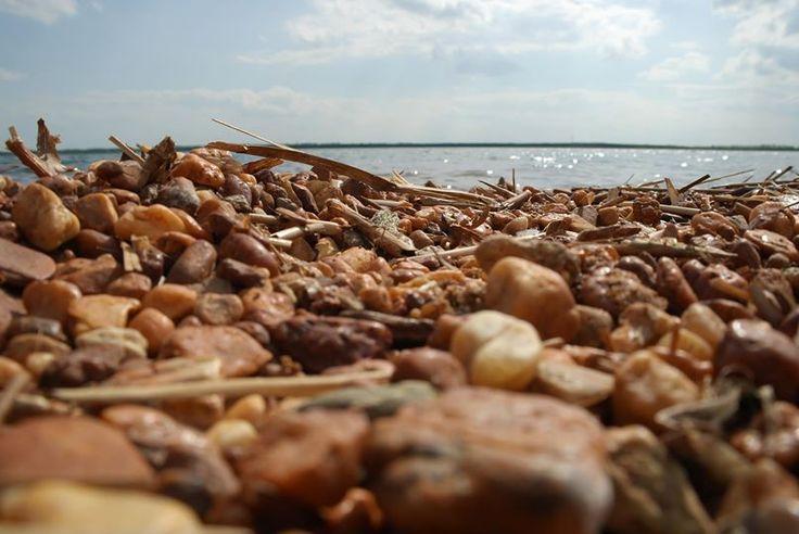 ufer und steine - badesee
