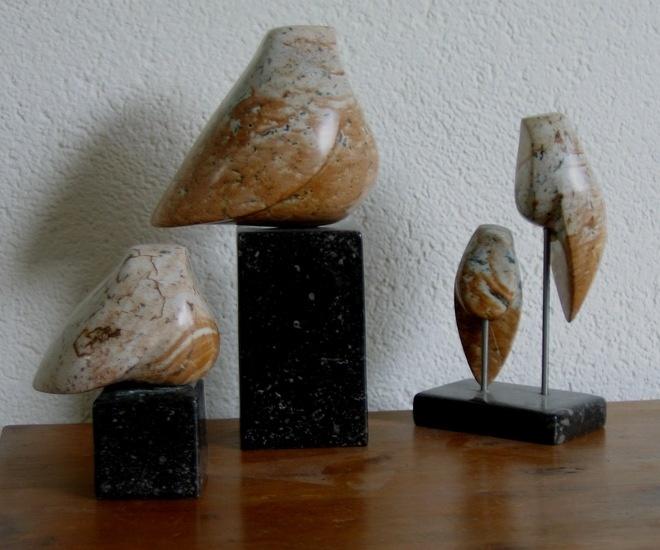 Peer van Gennep - vogel-groepje