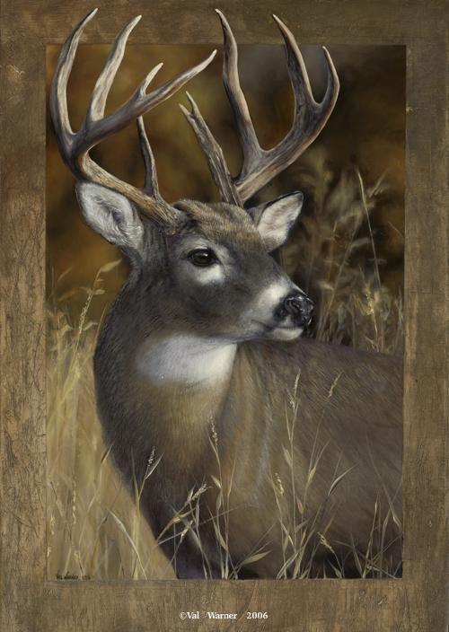 New Swirls | Deer paintings