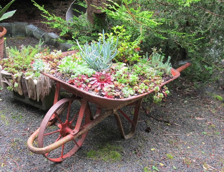 Flower Garden Ideas With Old Wheelbarrow 205 best garden - on wheels images on pinterest | flower gardening