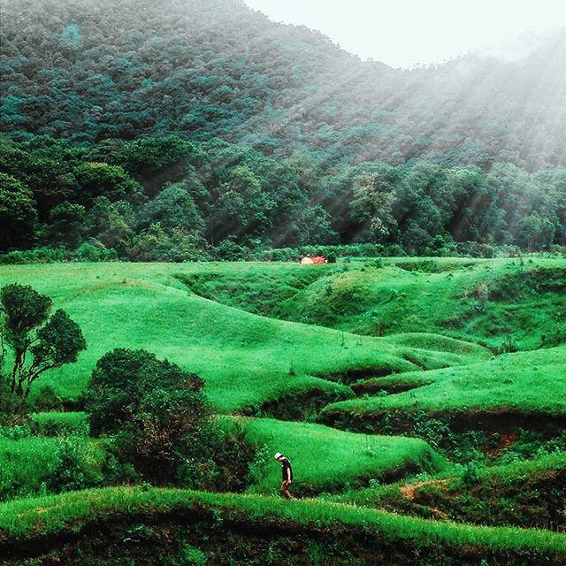 Sunshine. Mt.Papandayan, Garut - Indonesia  Photo by @tyuniar93  Thanks and keep melonggarut !  #papandayan #tegalpanjang