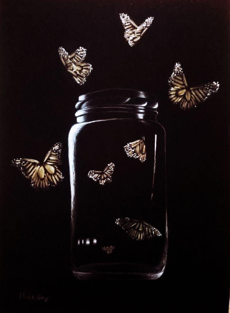 #bottle #handdraw #butterfly #colorpencil #illustration