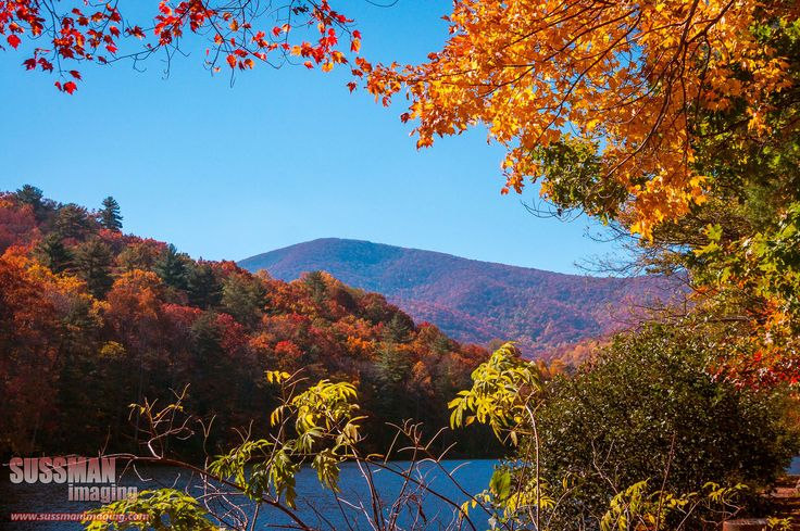 18 Best The Enchanted Valley Images On Pinterest Blairsville Georgia Young Harris And Holiday