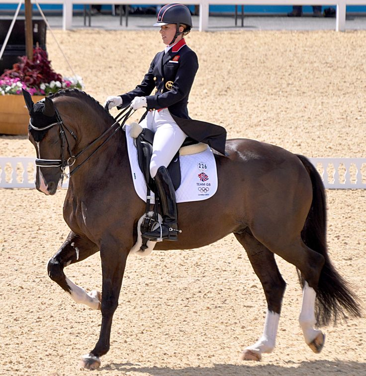 Charlotte Dujardins and Valegro, current world dressage champions. (Wikipedia says his stable name is Blueberry - gotta love that.)