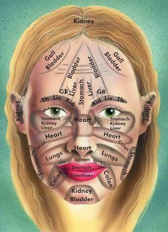 The face zones shown in the diagram above, are the end points of specific internal organ meridians. Refer the Meridians tab under the Acupressure tab above. The heat, toxicity and illness energy in...