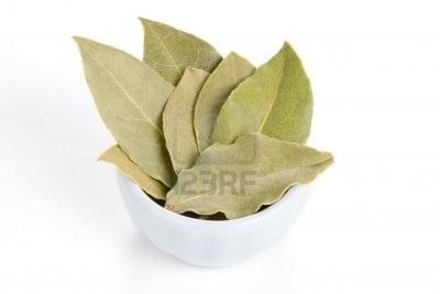 el laurel es una planta preciosa para la salud. Se utiliza para aromatizar pescado y patatas.