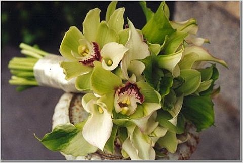 cymbidium orchids and calla lillies- Bridesmaids