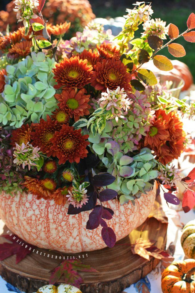 flowers.quenalbertini2: Blooming Pumpkin Centerpiece | HIWTBI