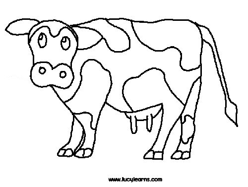 coloring beef cow pages - photo#44