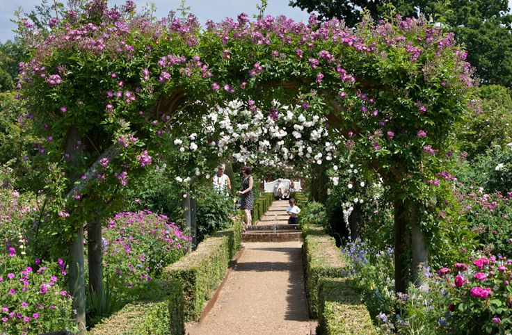 Mottisfont Abbey Hampshire Dorsetcamera. The gardens were packed with visitors today.