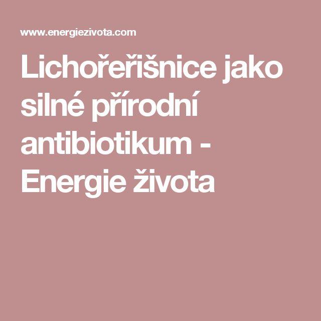 Lichořeřišnice jako silné přírodní antibiotikum - Energie života