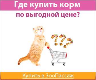 Товары для животных. Магазин товаров для животных