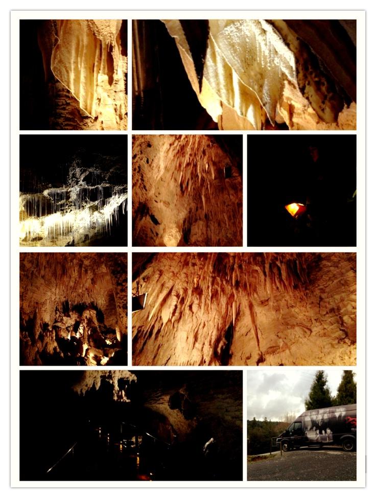 Ruakuri Cave, Waitomo, New Zealand.