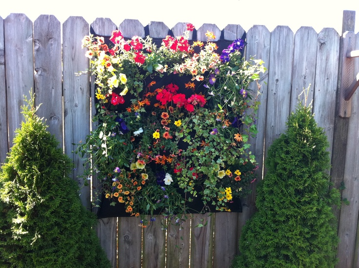 easy way to hide an ugly fence and color up your yard