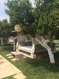 lounchebed onder sinaasappelbomen in plaats van bamboe bed