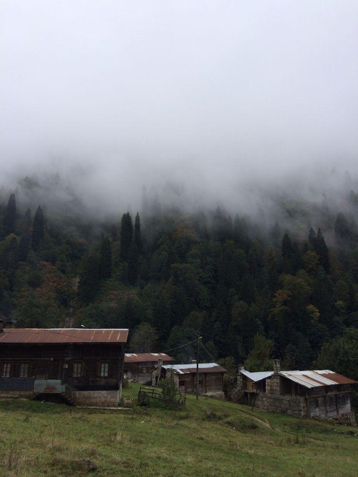 Ayder Yaylası,Çamlıhemşin,Rize,Turkey
