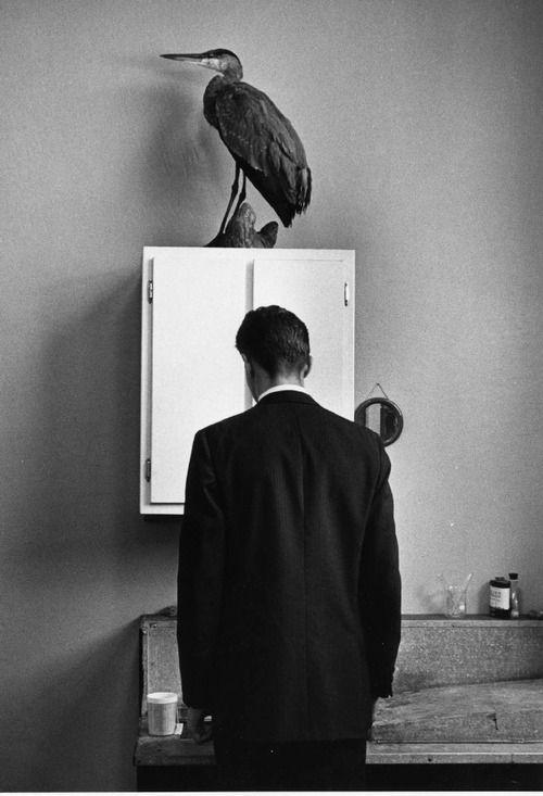 André Kertész: The Heron, 1969 - Vintage Silver Print