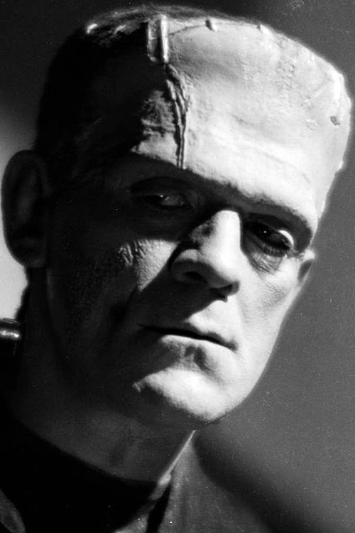 frankenstein monologue the monster This lesson examines the character of frankenstein's monster, centering upon  the question, 'who is frankenstein's monster' the lesson.
