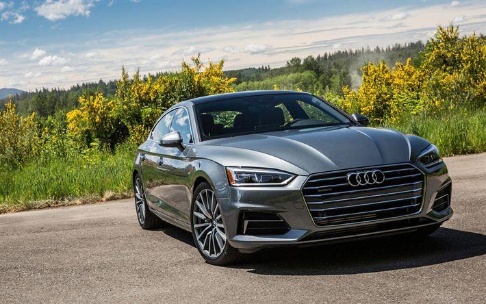 Download imagens carros de luxo, Audi A5 Sportback, 2017 carros, cinza a5, carros alemães, Audi
